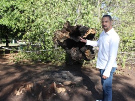 City Parks' regional manager for Region B, Alton Rankin, points to the damage caused by hot coals which in turn caused the tree to collapse, injuring two park users earlier this week.