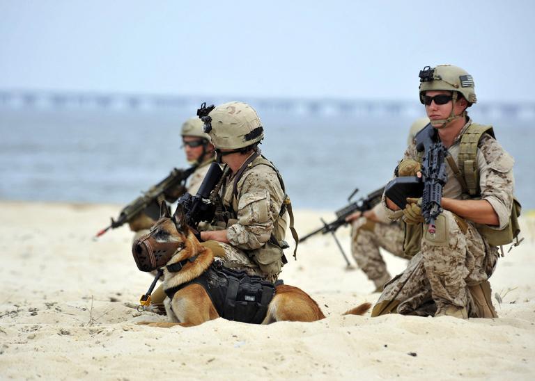 US Navy SEALs told to stop spilling secrets | AFP | Brakpan