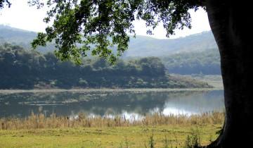 Hazelmere Dam update