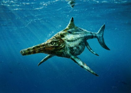 Move over Nessie: Real Scottish sea monster uncovered | AFP | Rekord