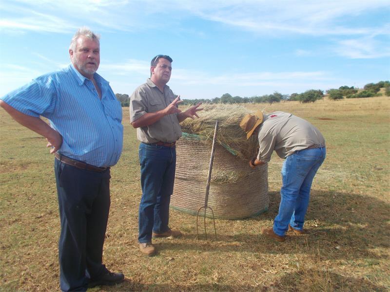 Krugersdorp Game Reserve gets a facelift