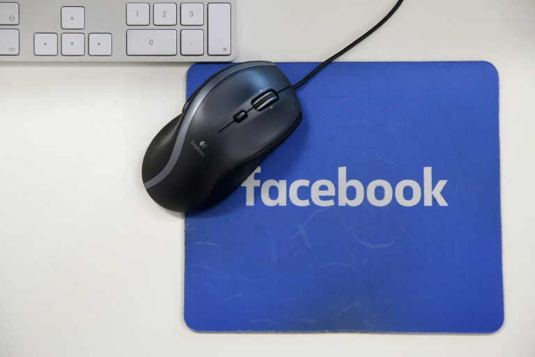 Facebook has said it is committed to remove terrorists and posts that support terrorism   © AFP   Daniel LEAL-OLIVAS