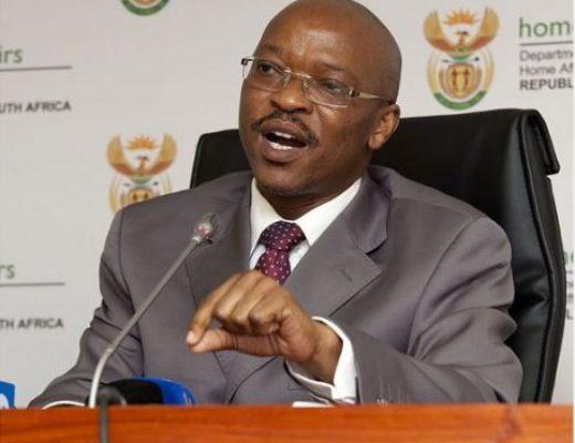 Home Affairs DG Mkuseli Apleni resigns