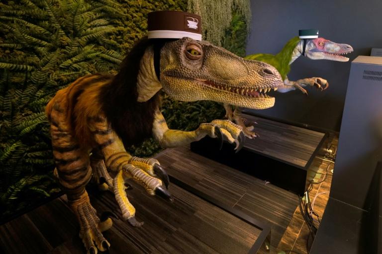 Dinosaur robots wait to check in customers at the Henn na hotel | © AFP | Kazuhiro NOGI