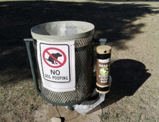 Pet poop bins to encourage Joburg north dog walkers to clean up