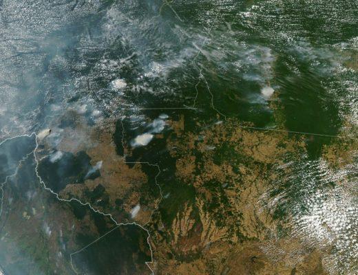 Brazil's Bolsonaro blames Amazon fires on NGOs as Twitter