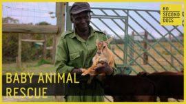 Meet Joseph, a baby animal rescuer in Kenya