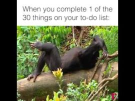 When you complete 1 of 30 things on your to do list