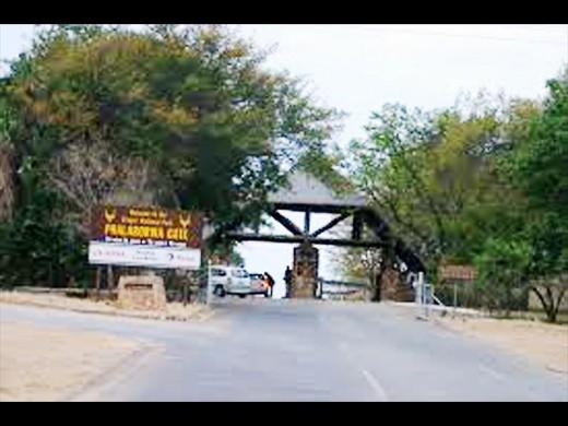 SANParks reaches hundred thousand mark | Letaba Herald