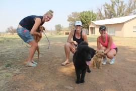 Chanté Bester, Marna Claassens en Jomari Myburgh saam met hulle Paws honde.