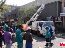 VIDEO: Boom in Wandellaan val op voertuig