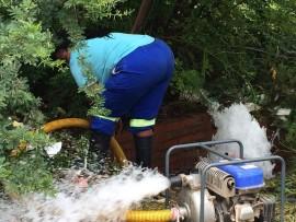stanley waterbeperkings 1