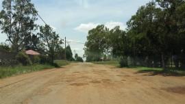 Potholes in Anton Stegman Homer (10) (Medium)