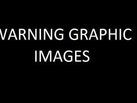 Graphic Image