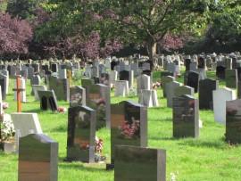 web cemetery img_4041 (Custom)