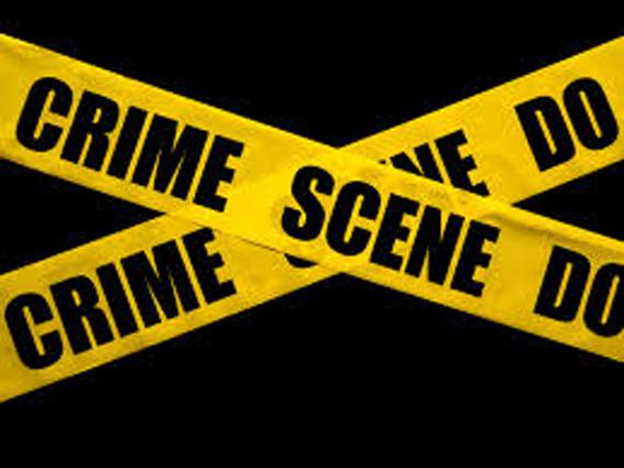 Heidelberg and Nigel Crime Briefs/Misdaadflitse