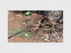 Illegal power cables that can endanger people's lives. This picture was taken at Vumbuka Informal Settlement on Tuesday, November 22, when all illegal connections in the area were removed by Red Ants together with the Metro Police.