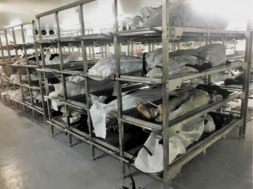 Flexmort » Mortuary Refrigerated Cabinets  Mortuary