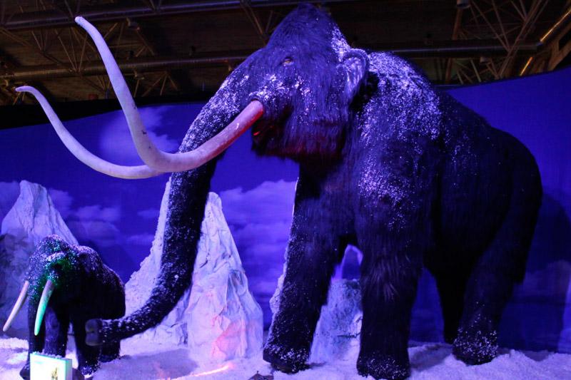 Ice-Age-Exhibition