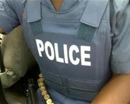 Police vest (Medium)