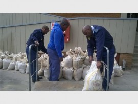 Police counting the bags of gold soil confiscated from five suspects last week.