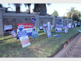 Numerous for sale sign boards were planted on Johan Roos' lawn.