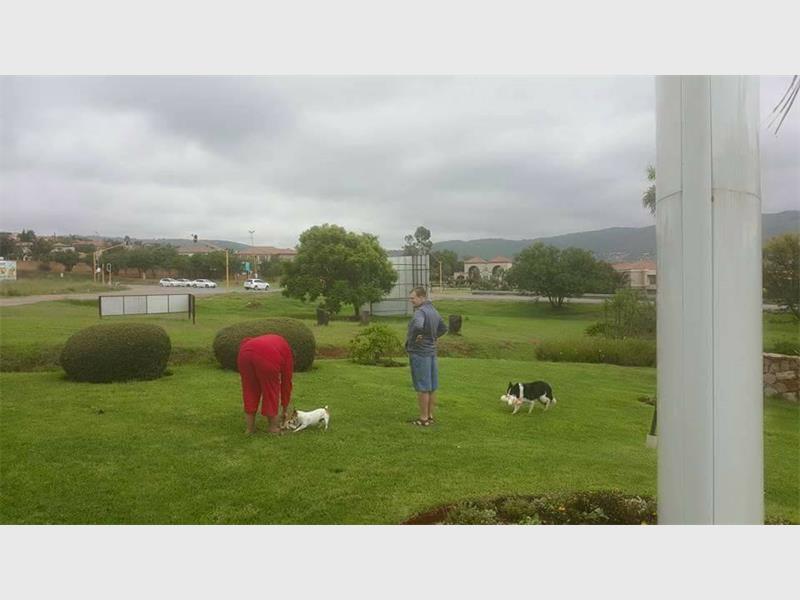 Laurence en Elmien speel met hul drie honde.