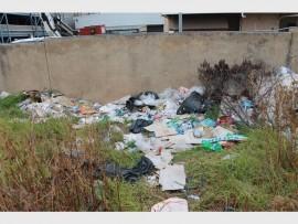 Voorbeelde van beide huishoudelike, bou- en kommersiële afval wat in die veld gestort is. Foto: Mathilde Myburgh.