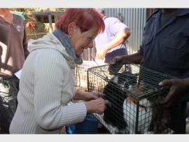 Engela Botha was devastated when the SPCA inspectors took her cats away. Photo: Roelien Vorster.
