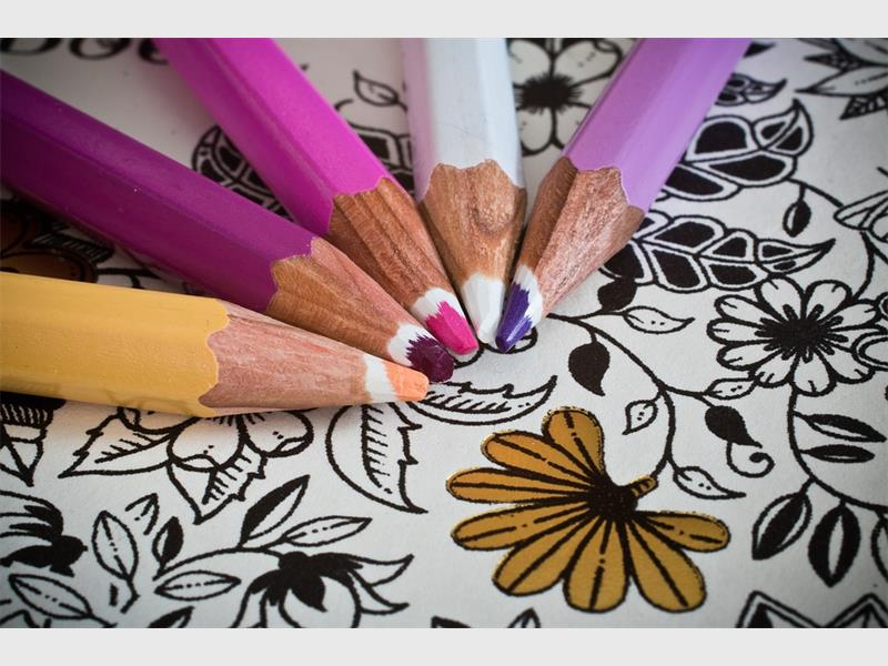 National Colouring Book Day Roodepoort Record