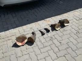 The rhino horns that were seized in Quellerina. (Photo: Supplied)
