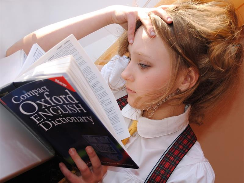 National Dictionary Day Roodepoort Record