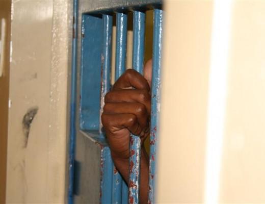 arrest bars (Custom)