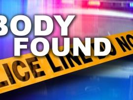 body+found+26