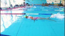 #ACTIVE – Electric Eels Swimmers
