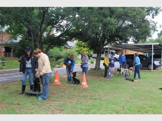 Los cachorros aprenden a ser héroes en la SA-Guía de la Asociación de Perros - Fourways Revisión 1