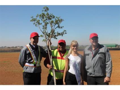 Seen Here From Left Planting A Lavender Tree Is Toyota Vp John Oliver Miss Earth Sa Ilze Saunders Senior Manager For Warehouse Operation Bongani Khunga