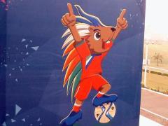 AFCON 2015's Mascot.