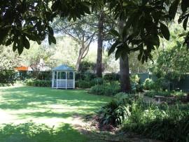 The rather large garden on display on Scott Street, Rynfield.