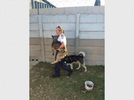 Benoni SPCA manager Vicky Finnemore.