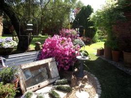 Rynpark Open Garden Day