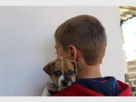 Die ses-jarige seun saam met sy nuwe hondjie Spotty.