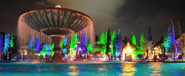Beautiful Lights Springs Advertiser