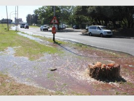 A rotten stench lingered in the streets around the Springs CBD on Tuesday morning as a blocked manhole across from the municipal offices overflowed with sewage.