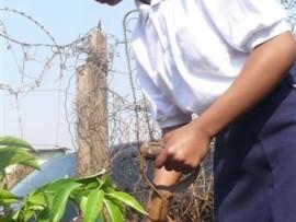Thato Makhele planting a tree.