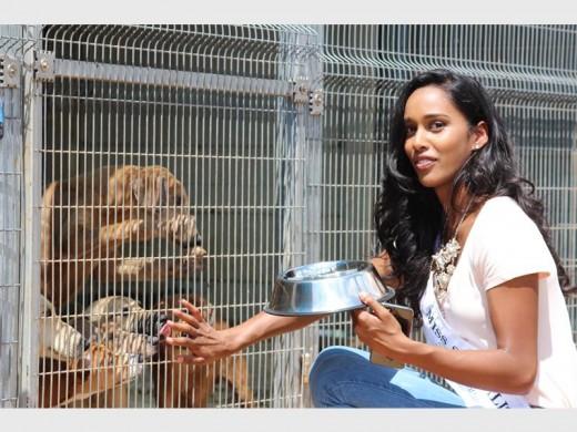 Miss SA finalistas difundir el amor en el refugio de animales - Randfontein Herald 1