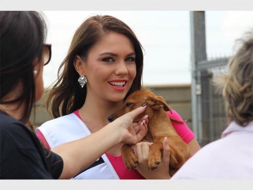 Miss SA finalistas difundir el amor en el refugio de animales - Randfontein Herald 4
