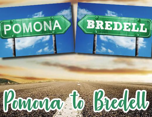 Pomona to Bredell   Kempton Express