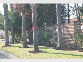 Trees and houses in Rustivia have been adorned with red ribbons showing residents' support for the campaign in which they take a stand and say no to crime. For more photos visit www.germistoncitynews.co.za.