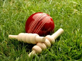 Get ready for the local cricket season.